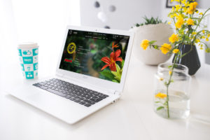 Digital Marketing Consulting for Brabion Flora Service in Armenia
