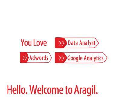 Digital Marketing Data Analyst